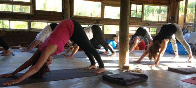 8 days Yoga Retreats 19-26 Aug  Colares | Cascais
